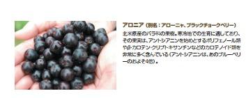 aroniafruit