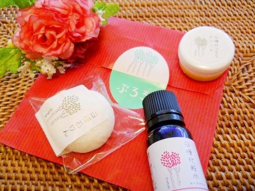 こだわりの国産オーガニックコスメ・ぷろろ白樺化粧品1000円トライアルセット試しました!