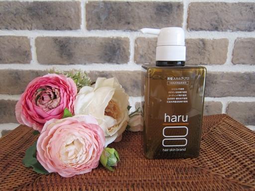 harua81