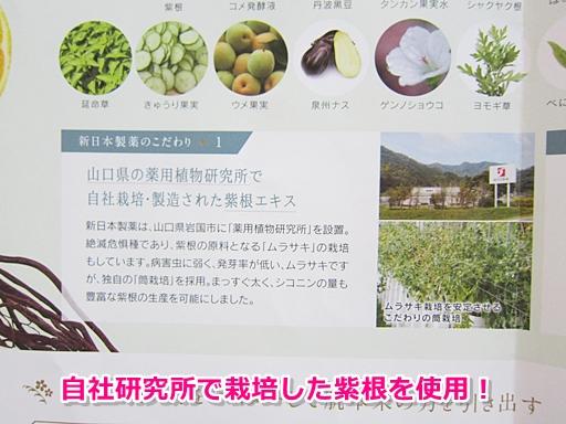 新日本製薬オーガニックオールインワン
